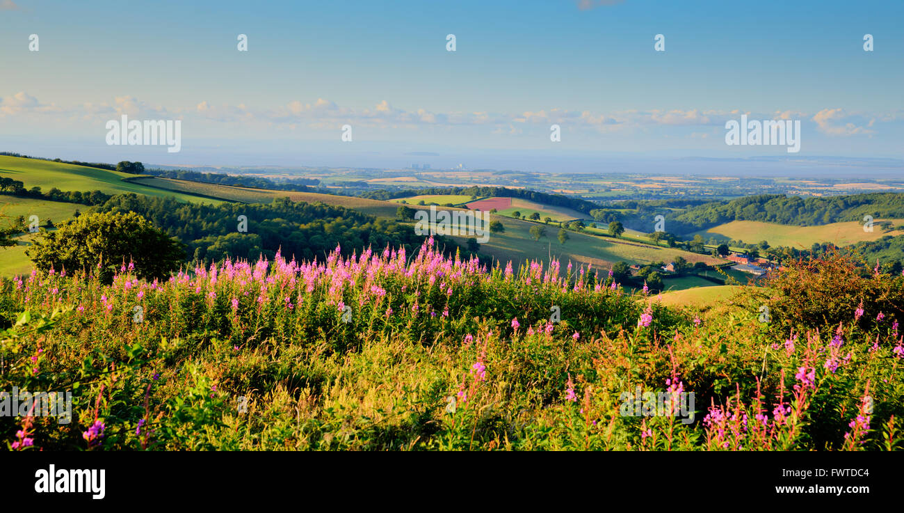 Somerset countryside towards Hinkley Point Nuclear Power station from Quantock Hills - Stock Image