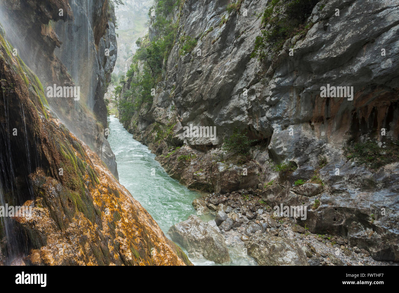The gorge of river Cares near Cain, Leon, Spain. - Stock Image