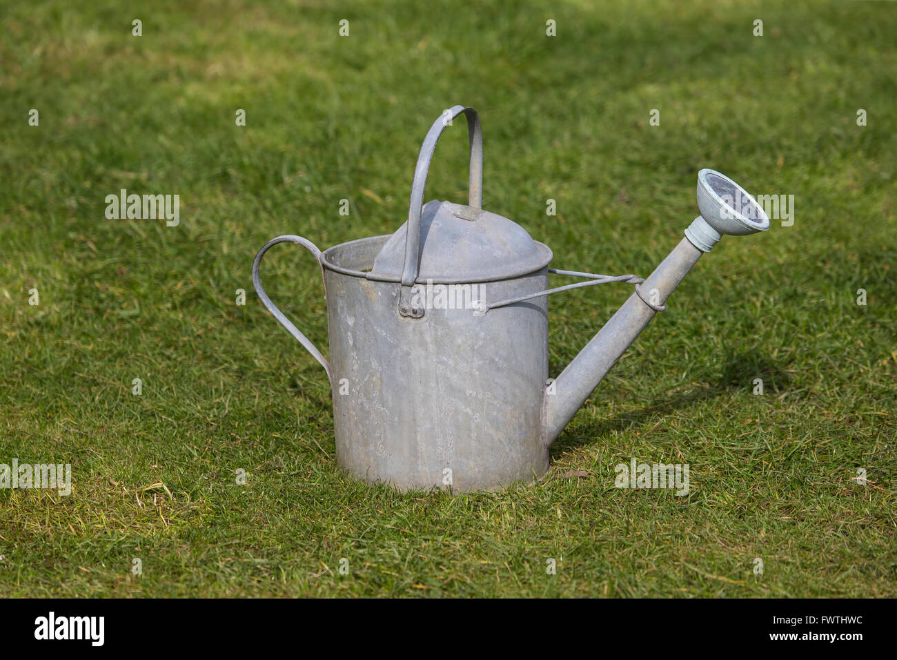 Old traditional galvanised galvanized watering can with metal rose and rubber surround on a garden lawn - Stock Image