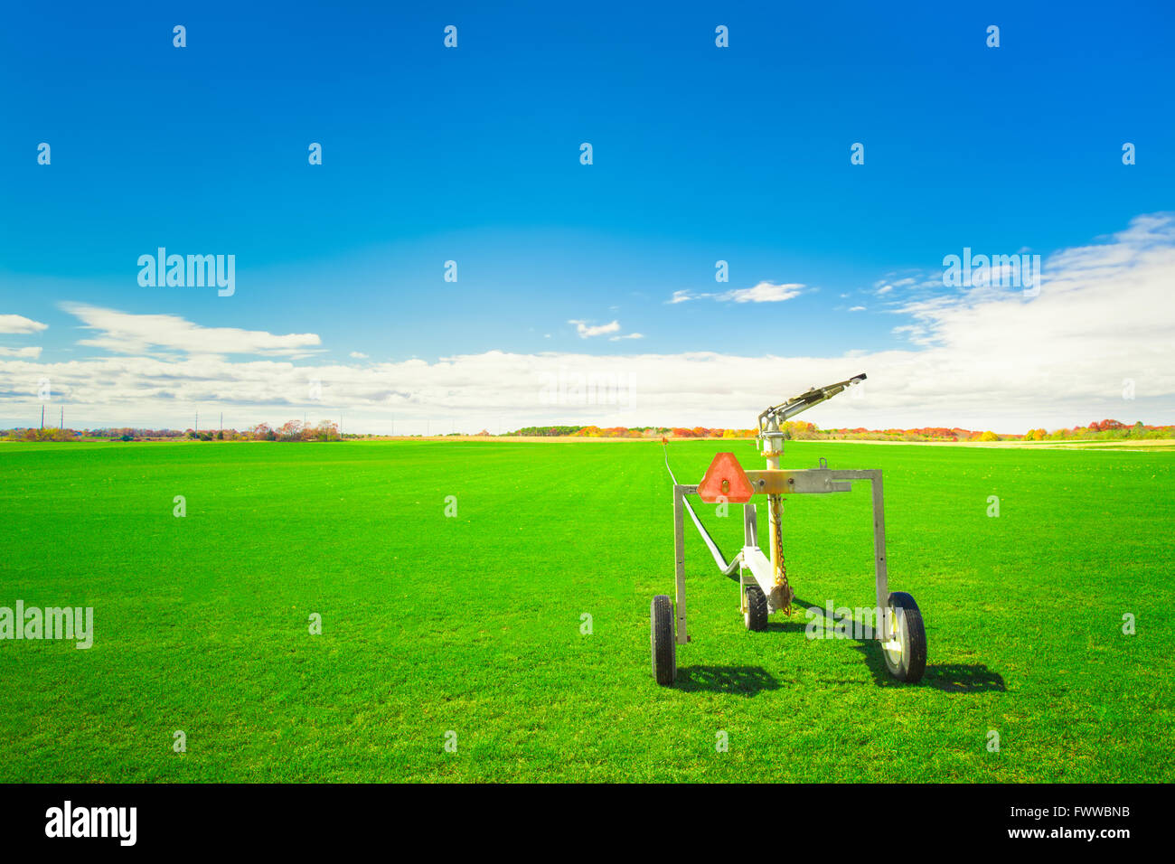 Vibrant green grass field on sod farm with sprinkler irrigation equipment and blue sky - Stock Image