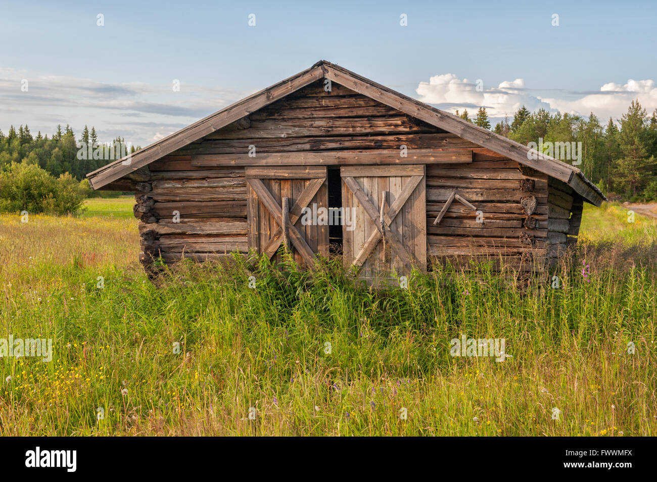 Traditional hay barn near Kalix typical for county Norrbotten in northern Sweden - Stock Image