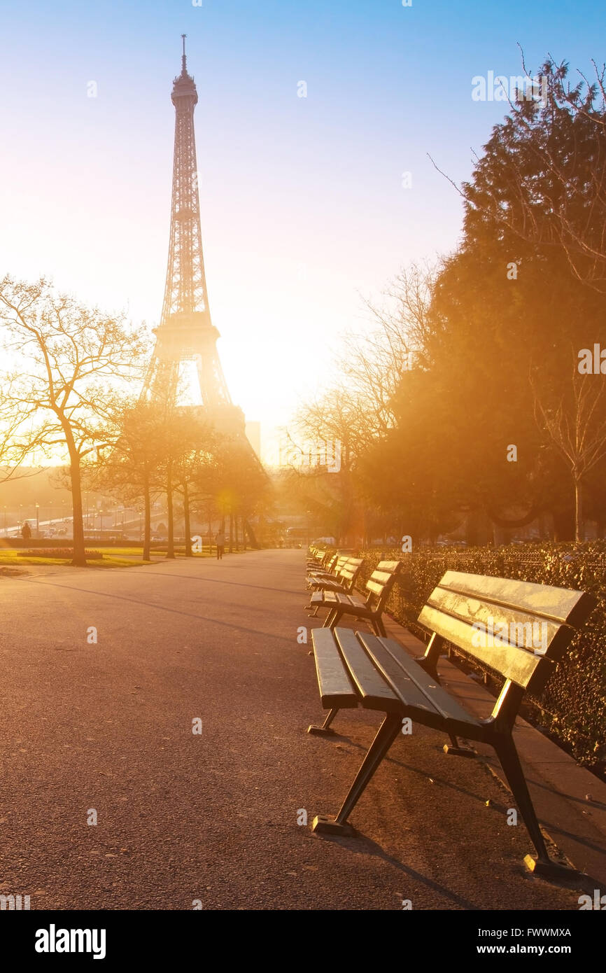 Sunny Morning In Paris Bench In Park Near Eiffel Tower