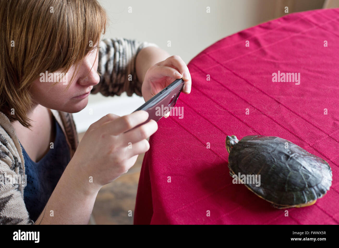 Creepy Turtle Stock Photos & Creepy Turtle Stock Images - Alamy