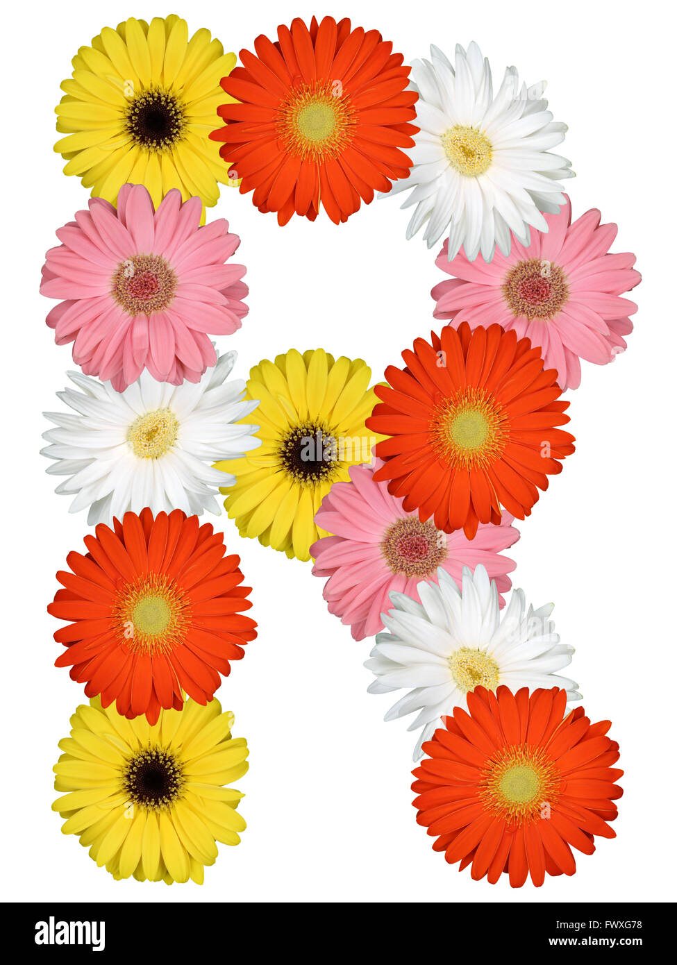 Letter r flowers stock photos letter r flowers stock images alamy letter r alphabet from flowers isolated on a white background stock image altavistaventures Choice Image