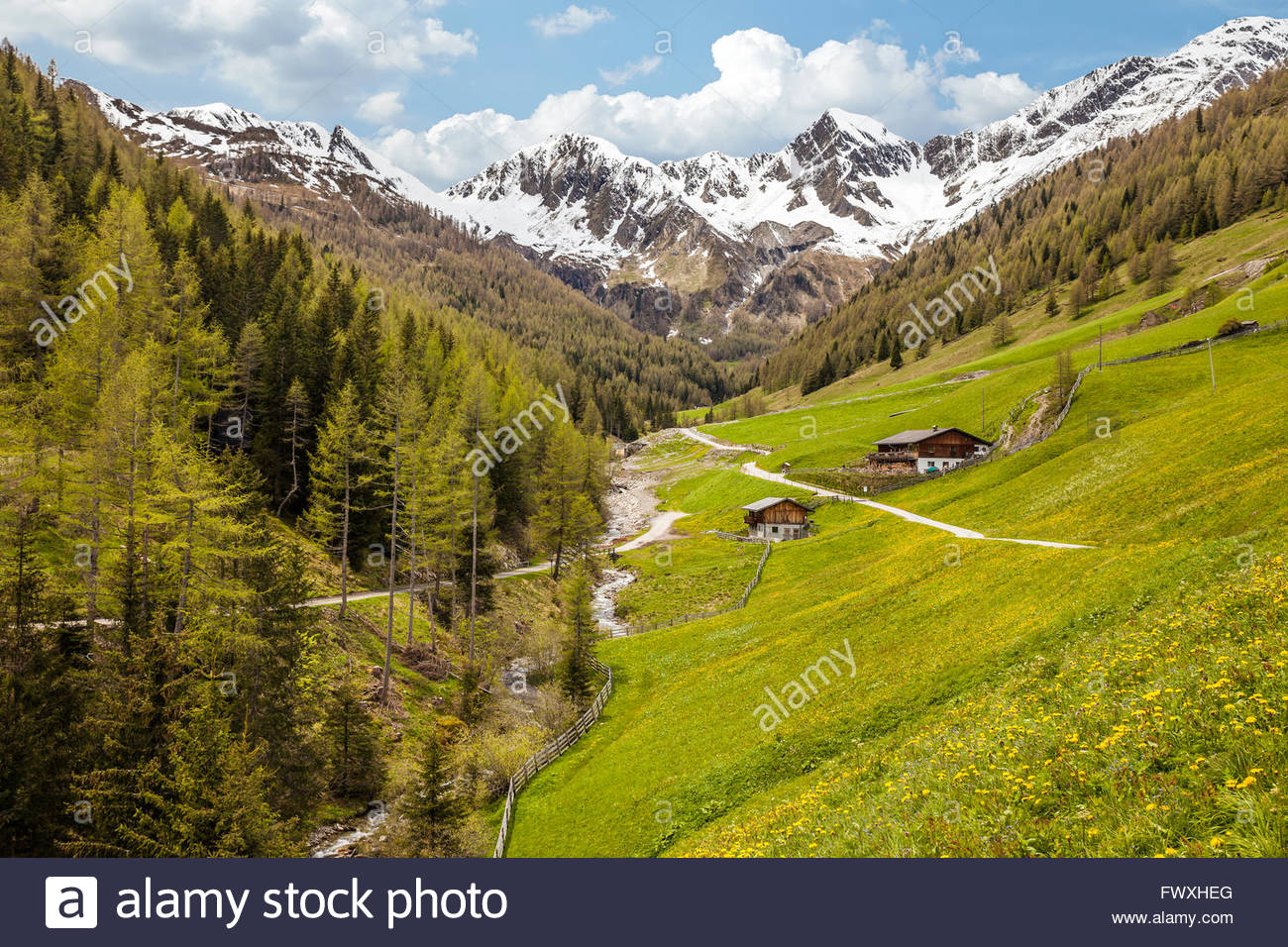 Alp in Campo Tures, South Tyrol, Italy - Stock Image