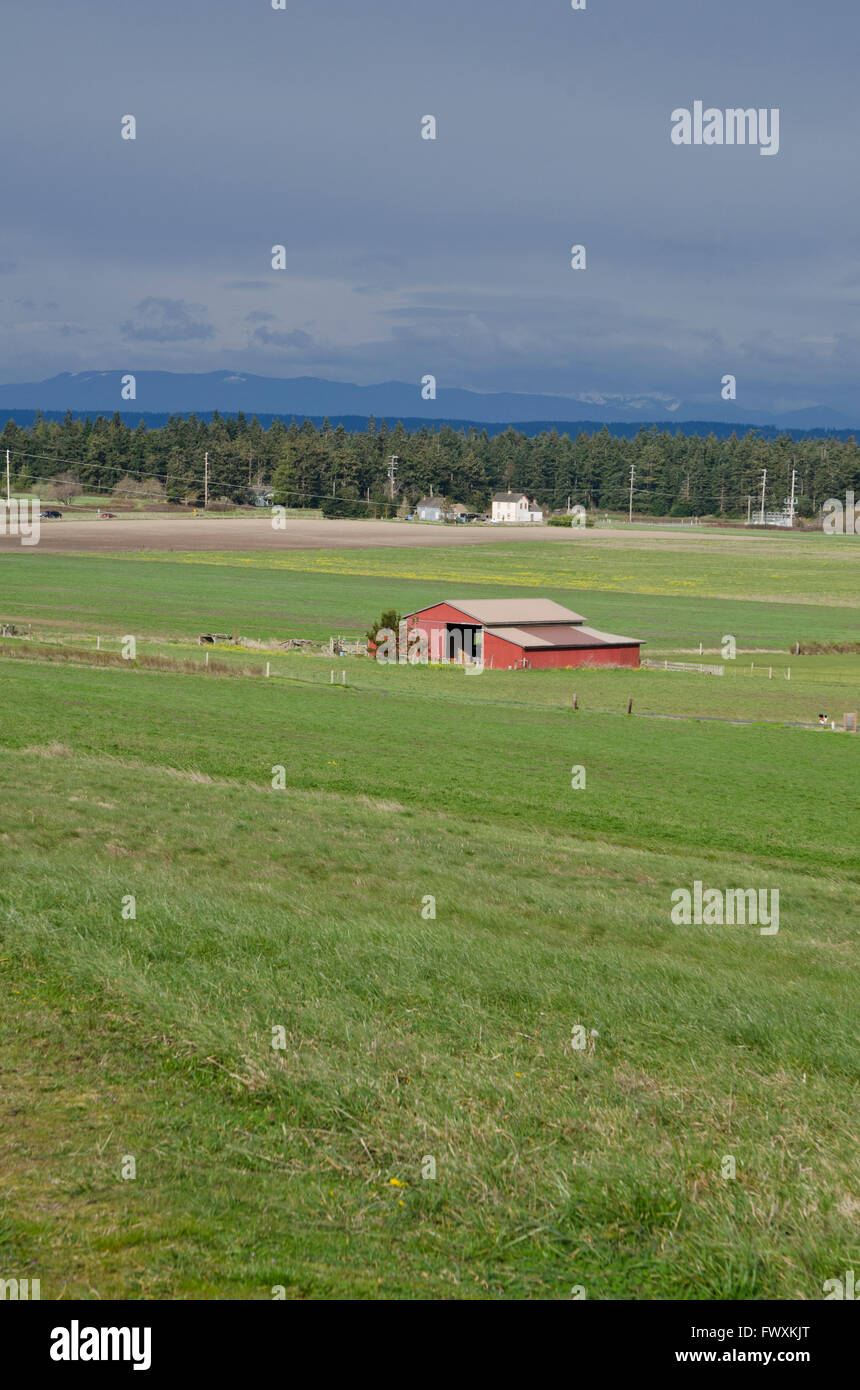 Red barn on the farm land of Ebey's Landing National Historic reserve on Whidbey Island, Washington State, USA. - Stock Image