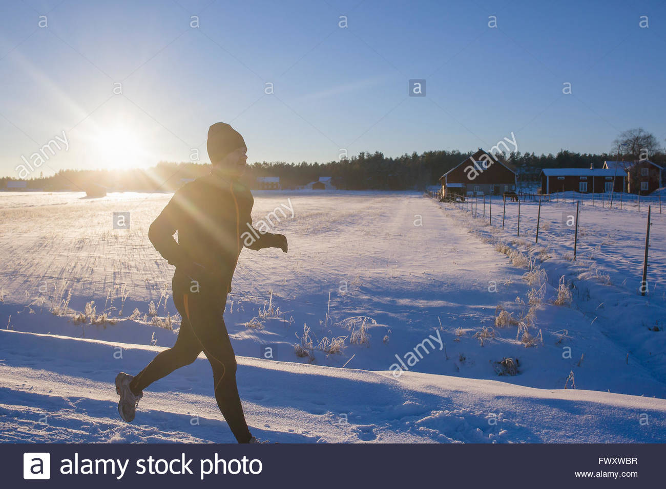 Sweden, Vasterbotten, Roback, Mid adult man running in winter - Stock Image