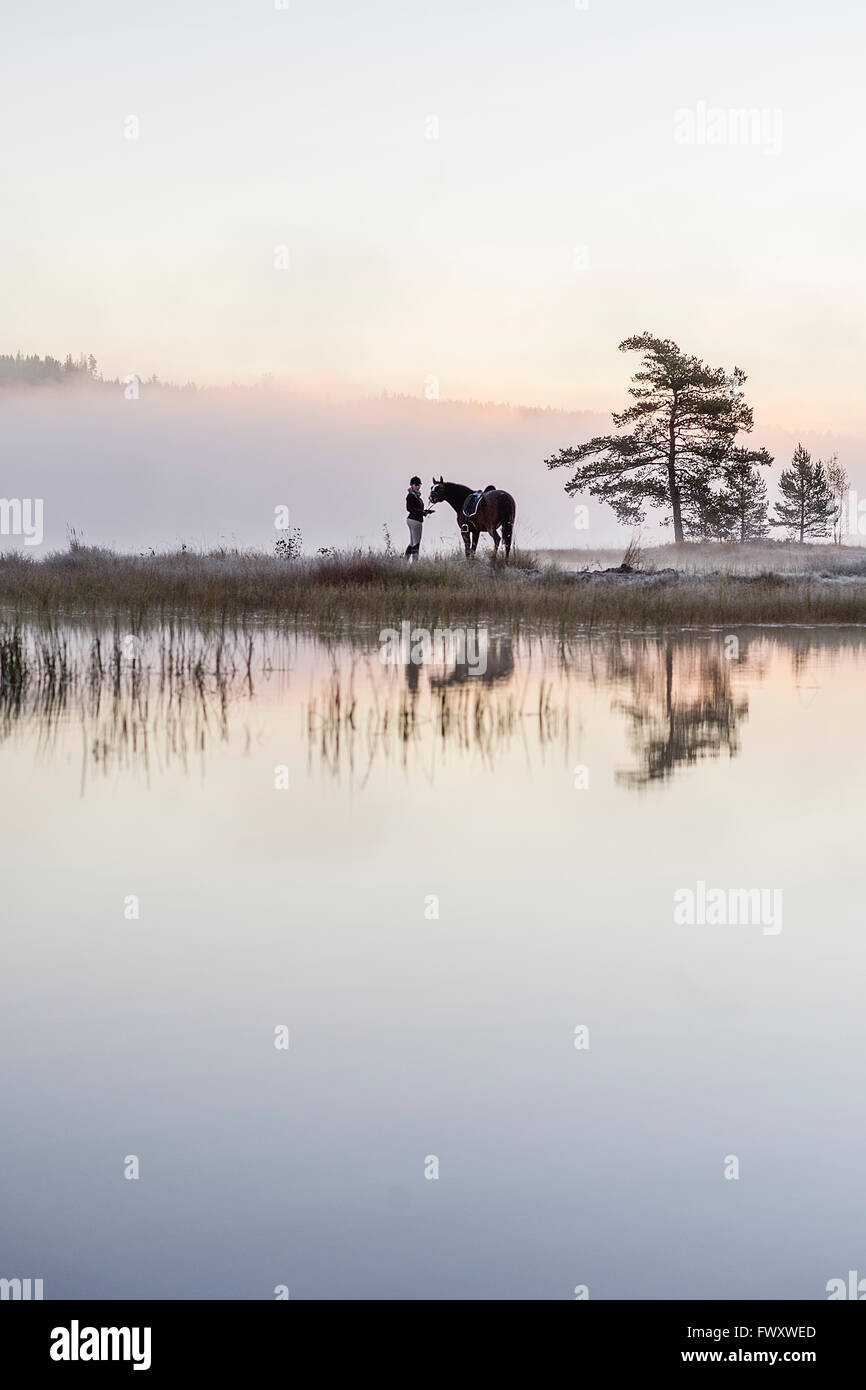 Sweden, Vastmanland, Bergslagen, Hallefors, Grythyttan, Bovik, Young woman standing with horse on lake shore - Stock Image