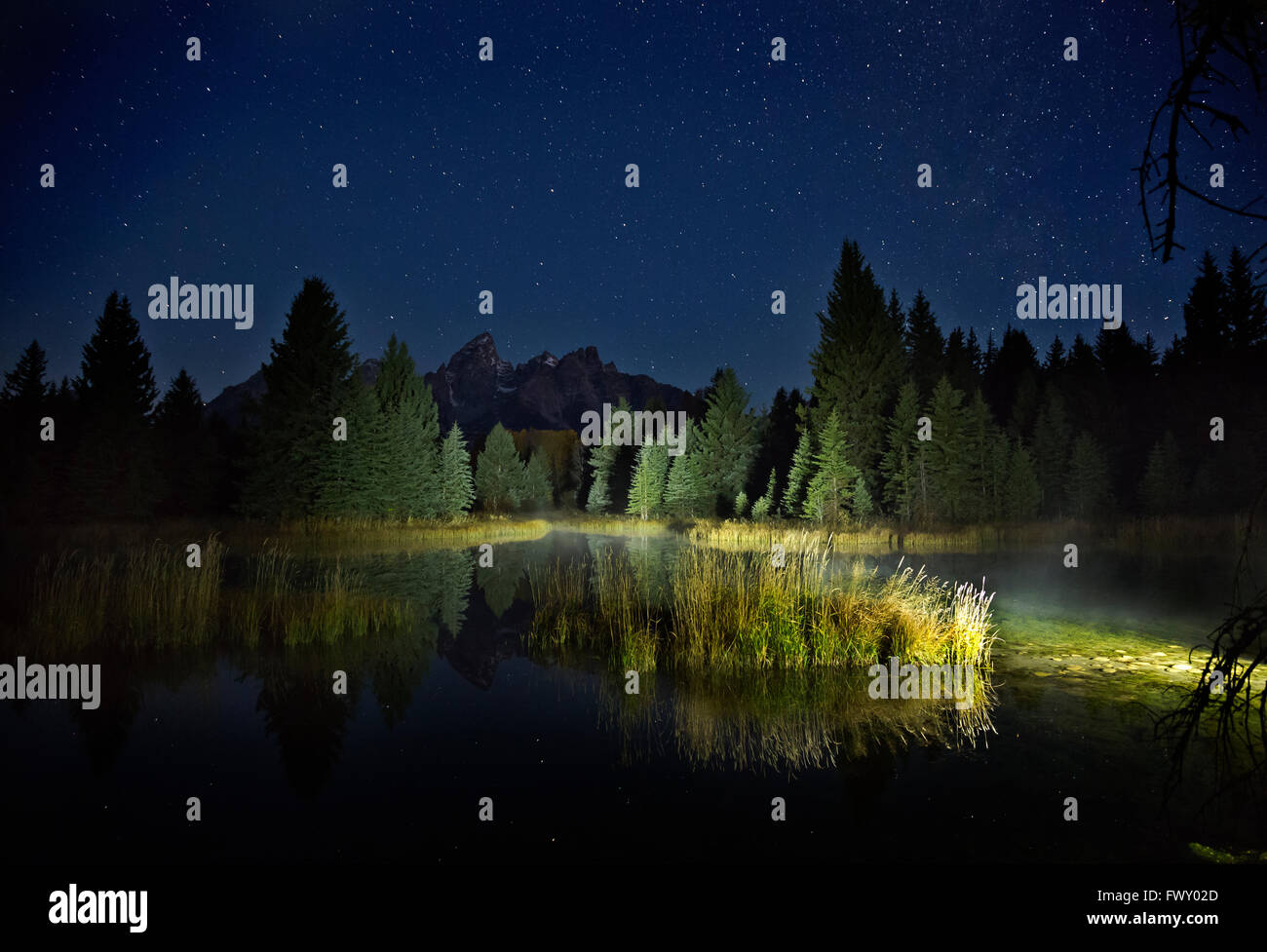 WYOMING - Stars in early morning sky at Schwabacher Landing on the Snake River in Grand Teton National Park. - Stock Image