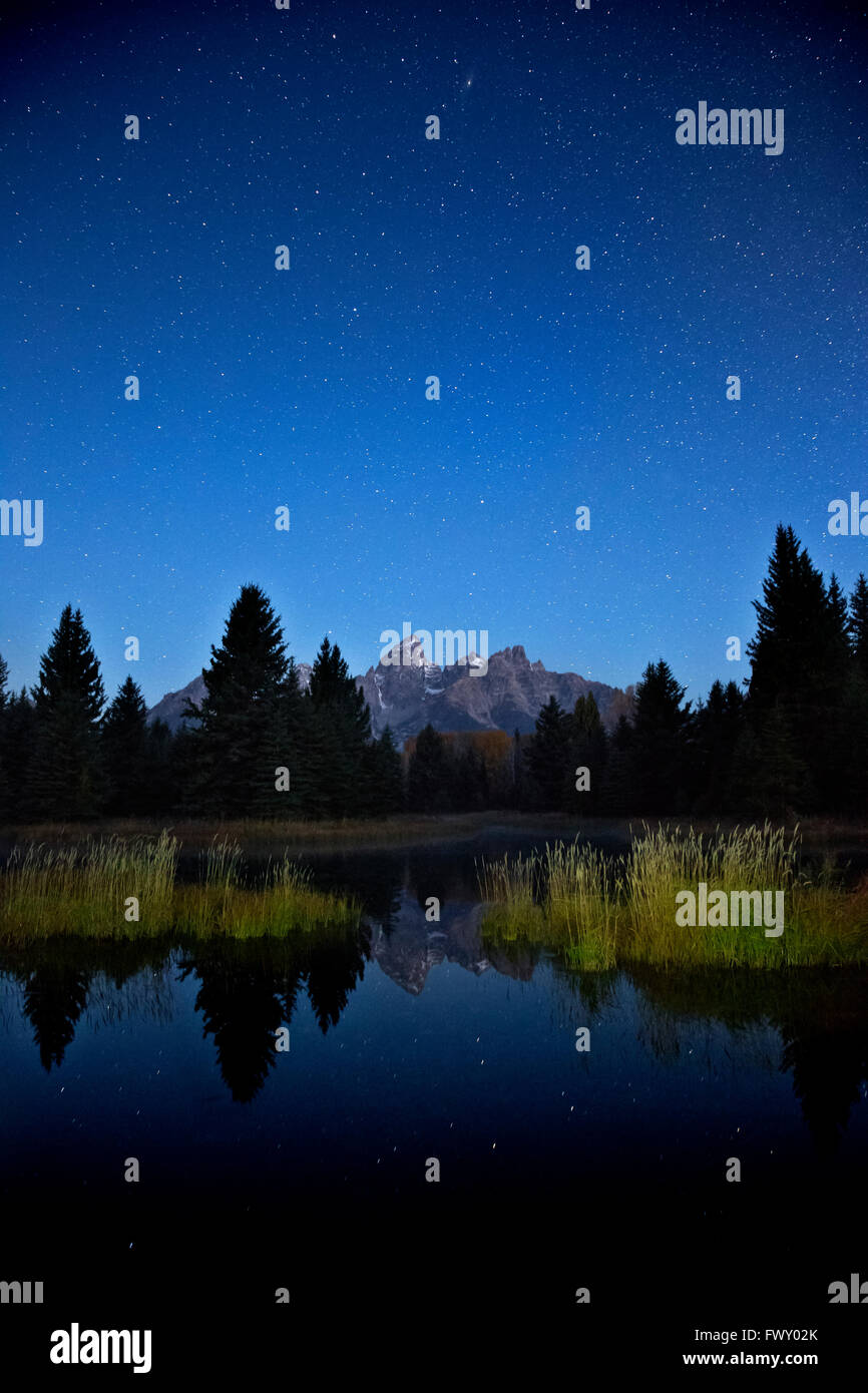 WY014746-00...WYOMING - Night sky and stars near dawn at Schwabacher Landing on the Snake River in Grand Teton National - Stock Image
