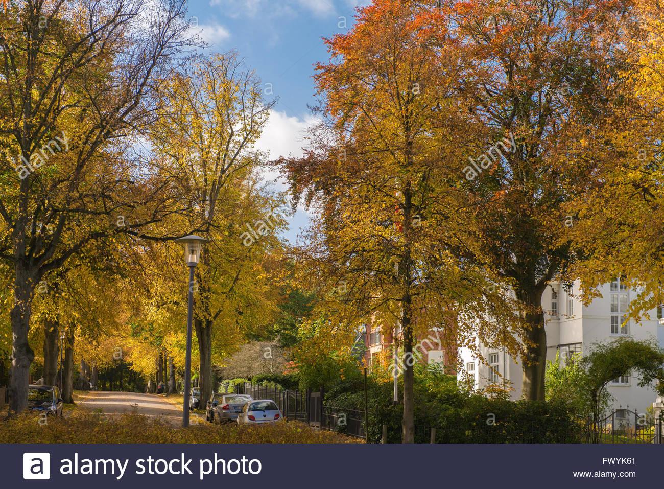 Bismarckallee, Kiel, Schleswig-Holstein, Germany - Stock Image