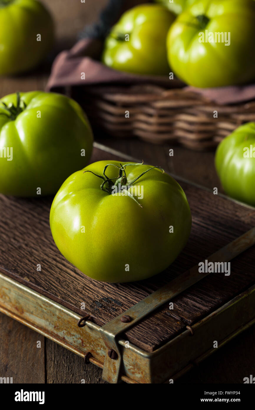 Raw Organic Green Tomatoes Ready to Eat - Stock Image