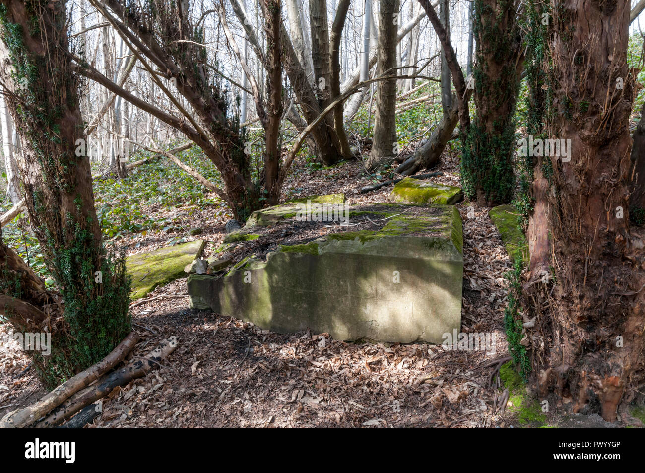 The remains of the Toe monument at Cobham Woods in Kent. A memorial to a severed toe, and its owner.  DETAILS IN - Stock Image