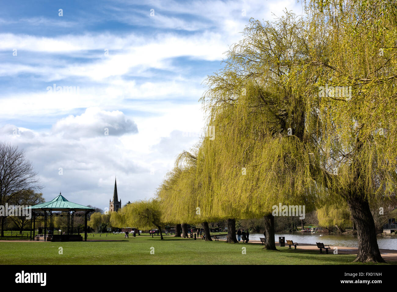 Bandstand and willow trees along the River Avon opposite the Swan Theatre at Shakespeare's Stratford-upon-Avon - Stock Image