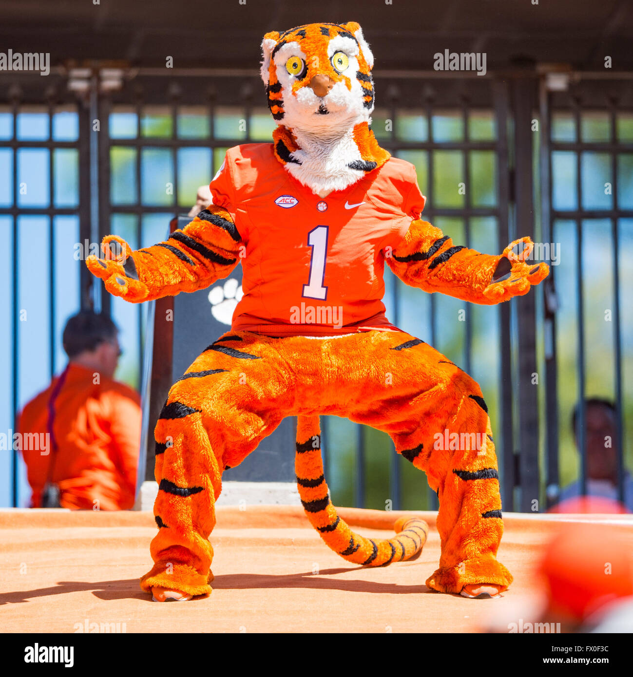 The Clemson Tiger Mascot during the Clemson Football ...
