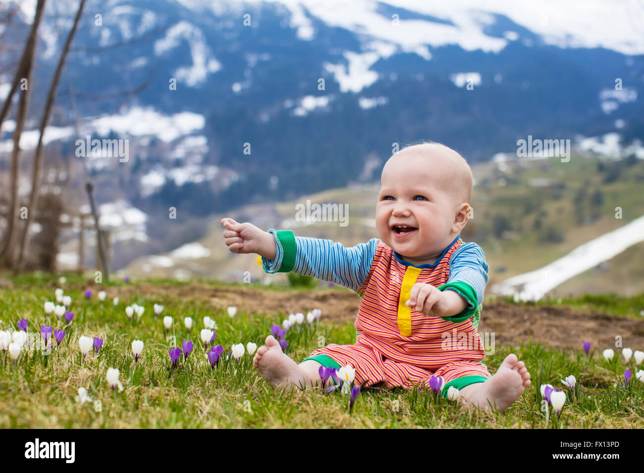 Little baby playing with crocus flowers in the Alps mountains in ...