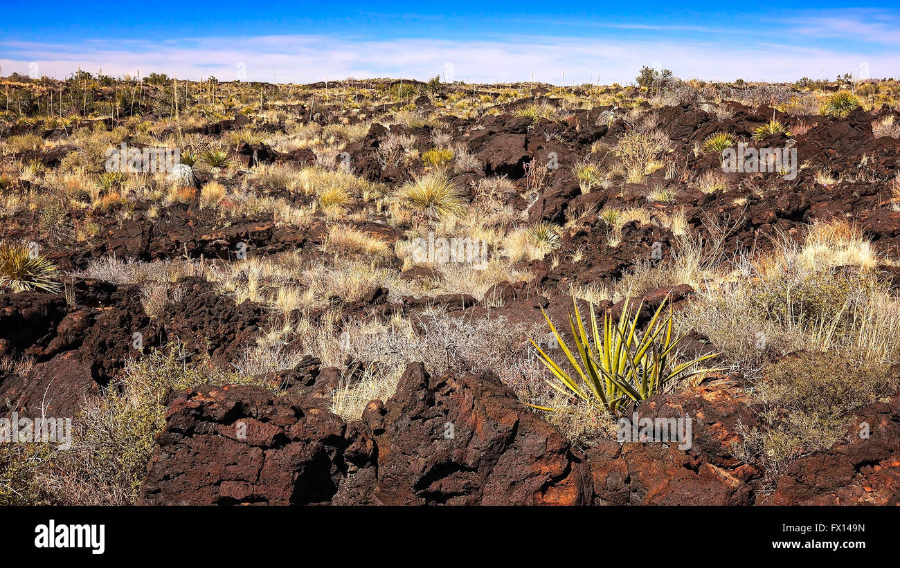 Volcanic landscape of lava at Valley of Fires Recreation Area in New Mexico - Stock Image