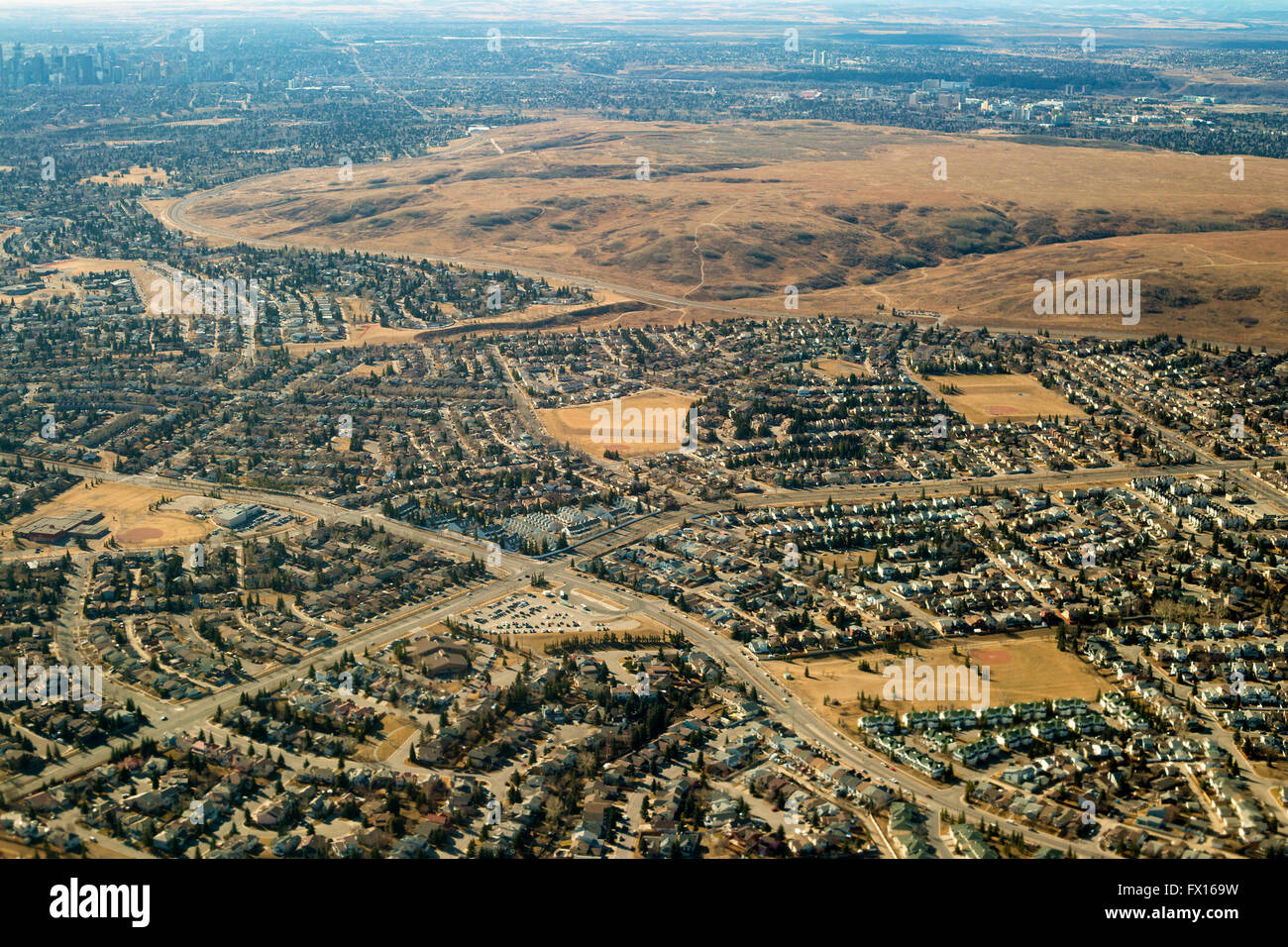 Nose Hill park with rough fescue grassland ecosystem surrounded by residential communities, aerial view. - Stock Image