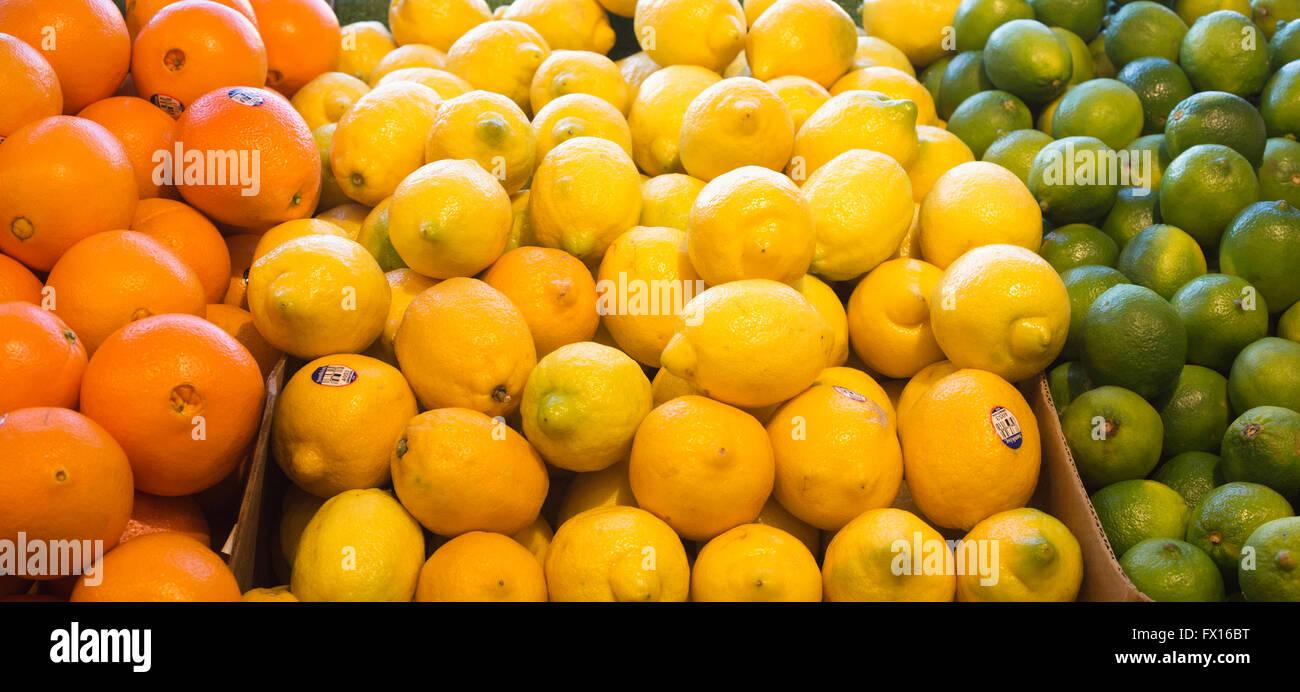 Oranges, lemons and limes at St Lawrence Market - Stock Image