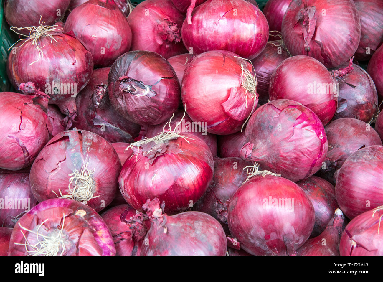 Background of red spanish onions seen at a market Stock Photo