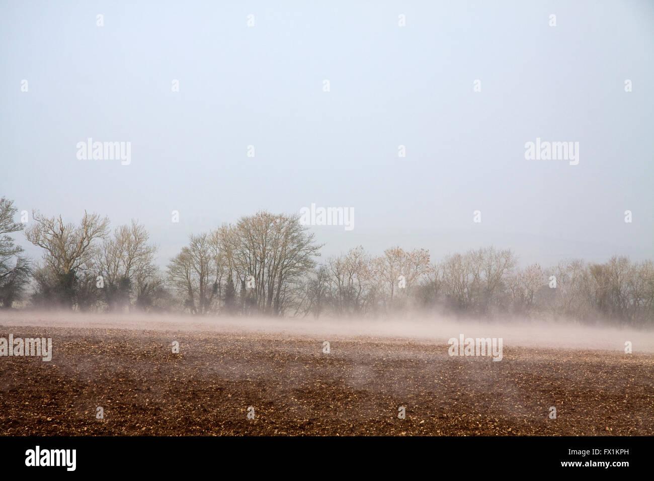 Heat Mist - Stock Image
