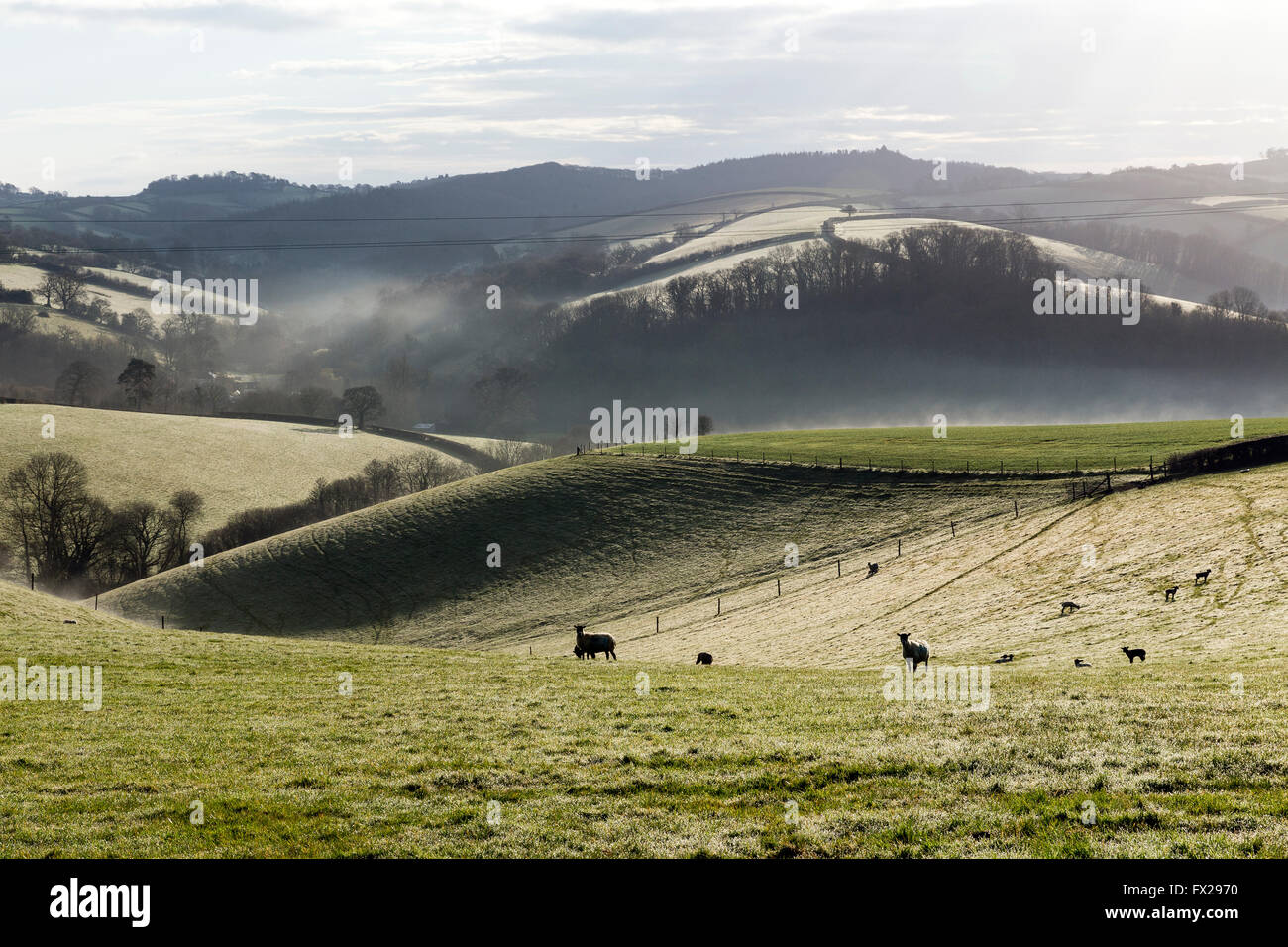 A combe or coombe or coomb can either refer to a steep, narrow valley, or to a small valley or large hollow on the - Stock Image