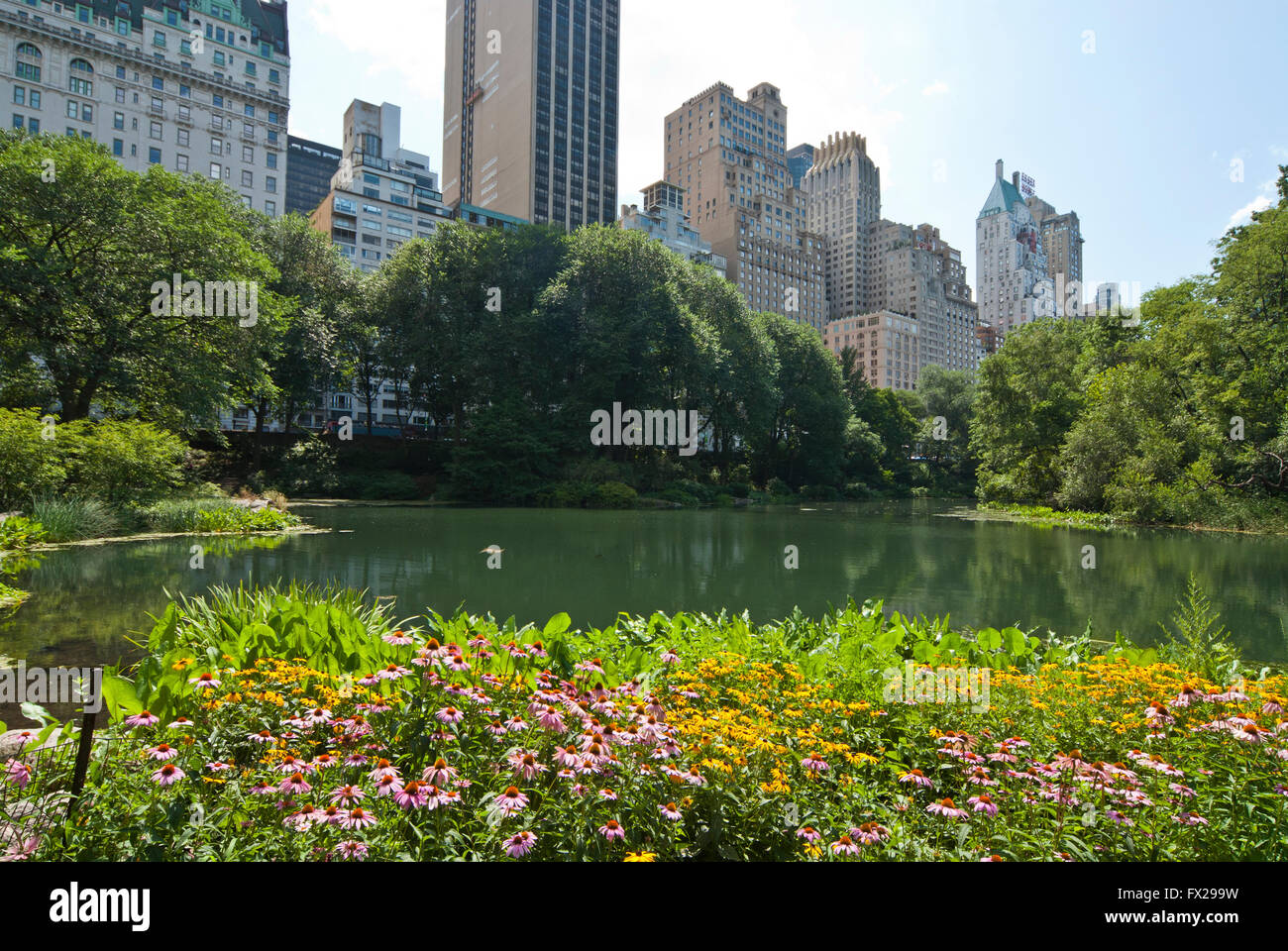Central Park NYC, New York, USA - Stock Image