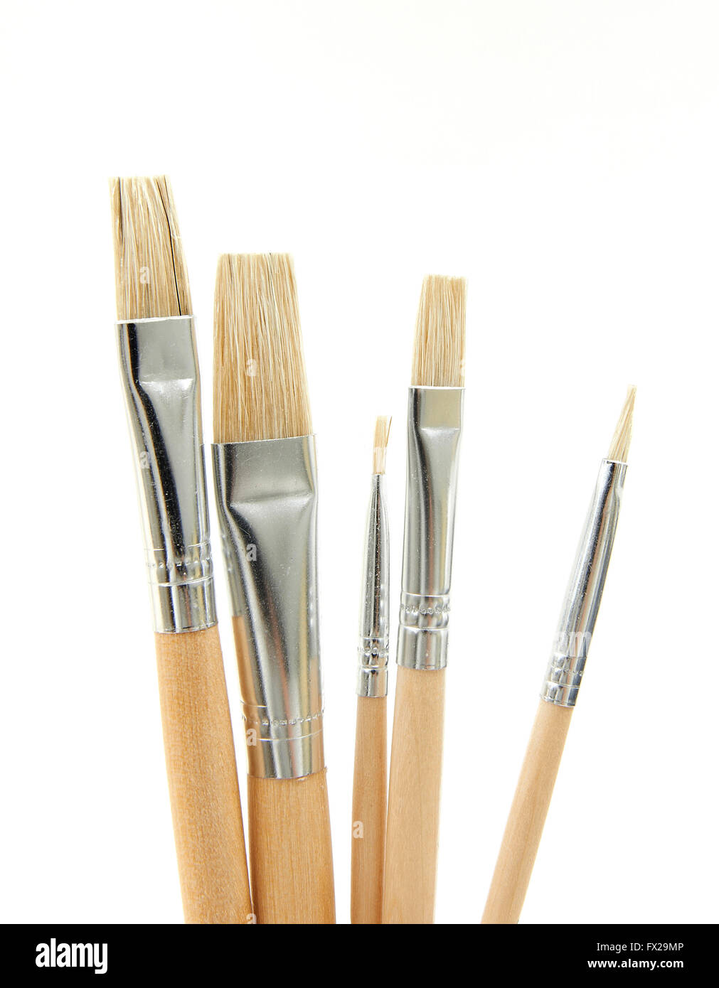 Paint brushes in different sizes on a white background - Stock Image