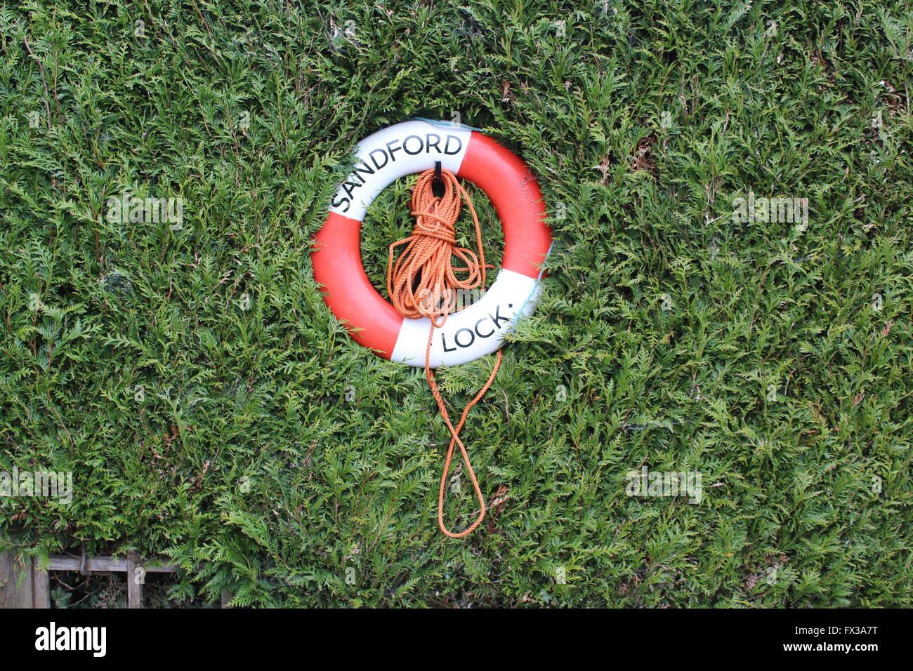 Life Belt nestled in bush by Sandford Lock on the River Thames, Sandford, Oxfordshire, UK - Stock Image