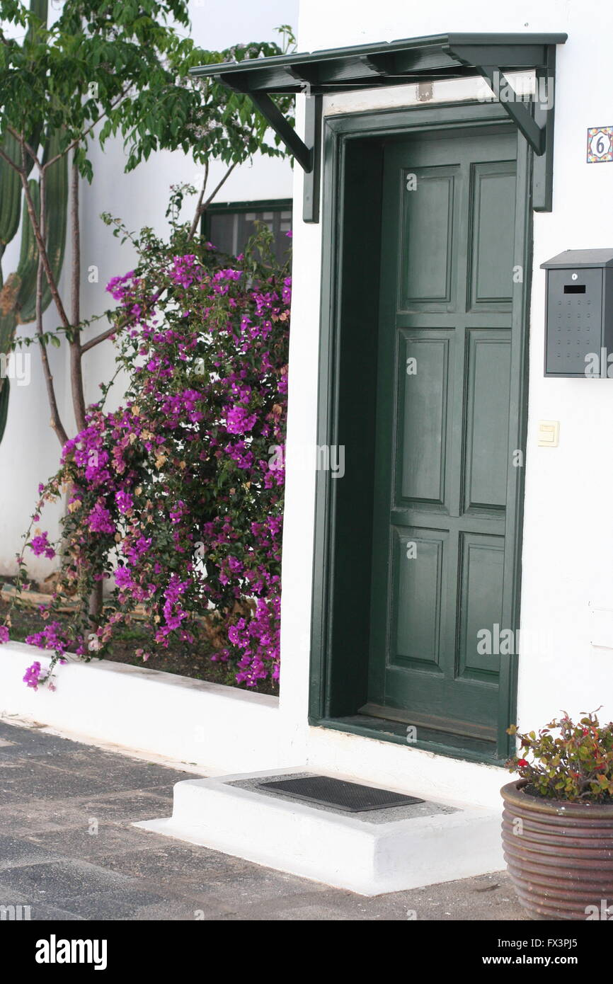 Side view of a Wooden Green panelled door house on a spanish street in Lanzarote Spain, beautiful cerise flowers - Stock Image