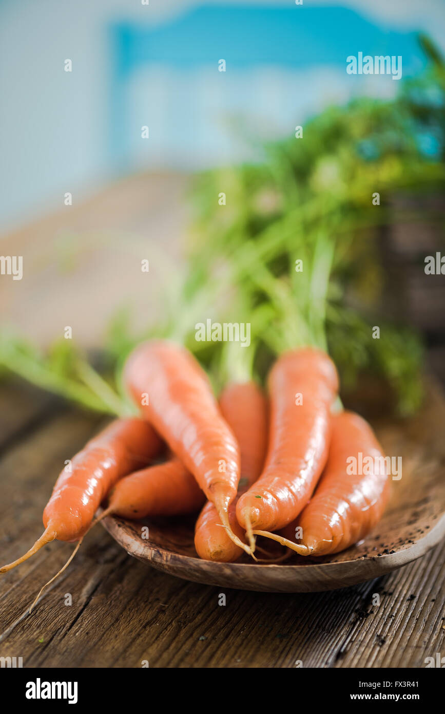 Fresh carrot from home garden on wooden farmhouse table in sunny kitchen Stock Photo