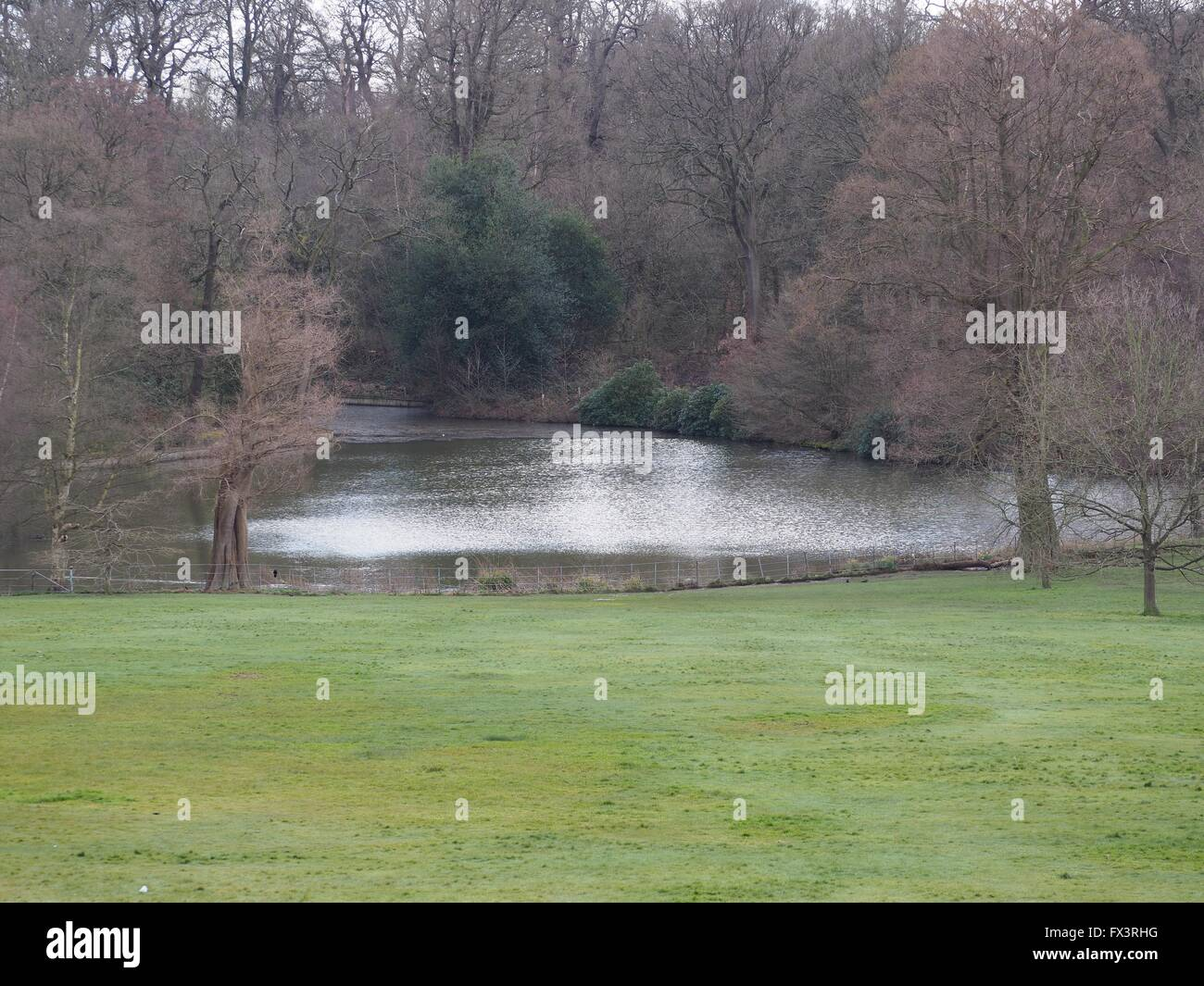 park, parks, Kenwood House, Hampstead, West Hampstead, Park, parks, family Stock Photo