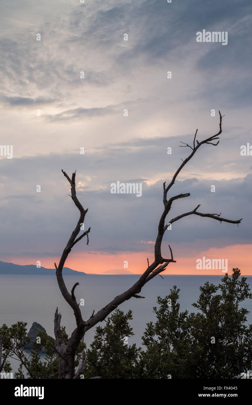 Giglio Island at sunset, view from Argentario island, Tuscany, Italy, Europe - Stock Image