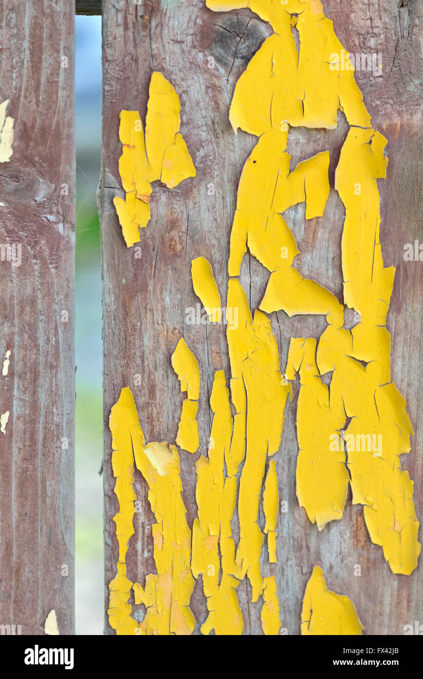 Old wooden planks with cracked yellow color paint - Stock Image