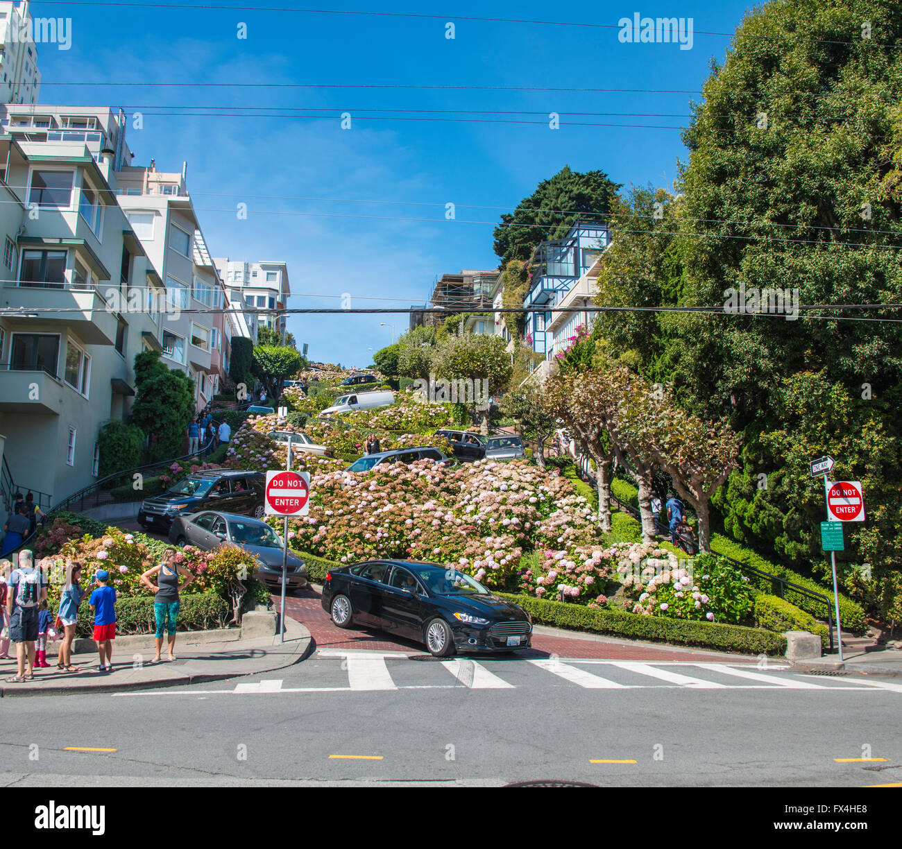Cars meander in Lombard Street, San Francisco, California, USA - Stock Image