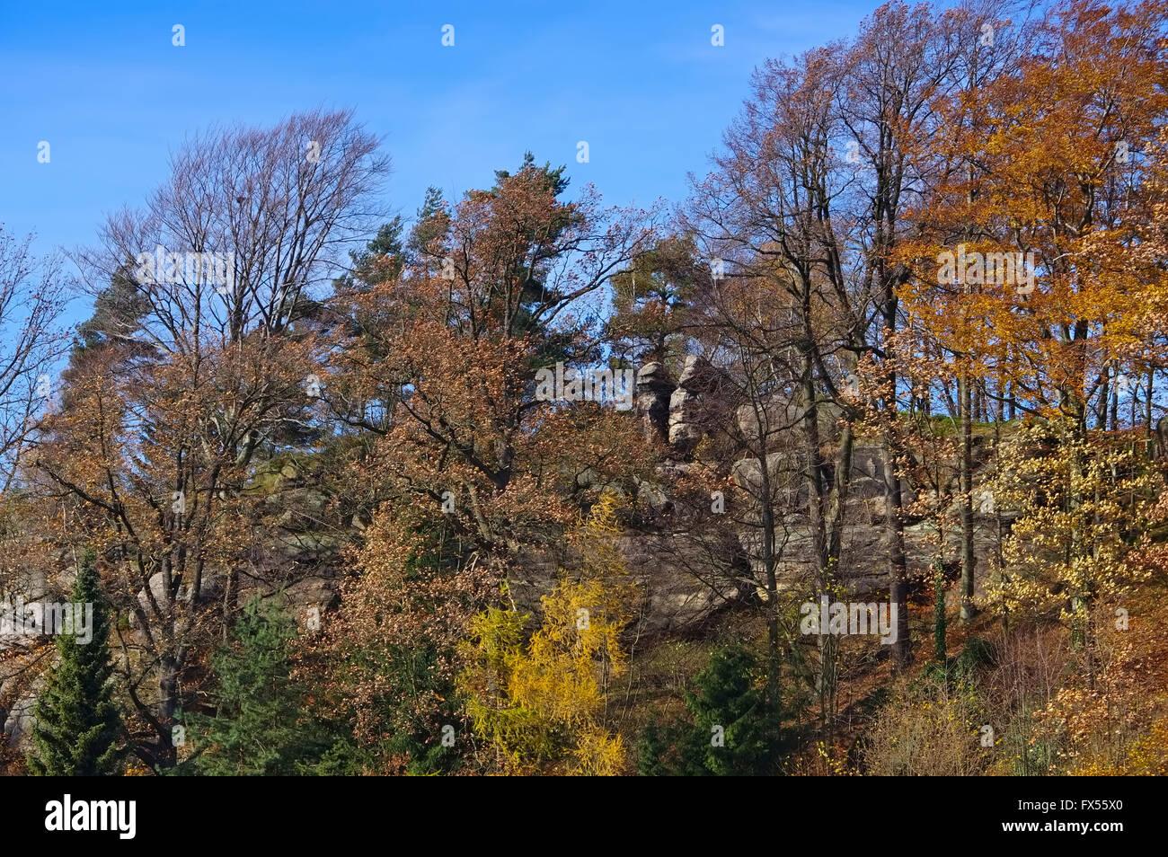 Jonsdorf Felsen im Herbst im Zittauer Gebirge - Jonsdorf rocks in fall in Zittau Mountains Stock Photo