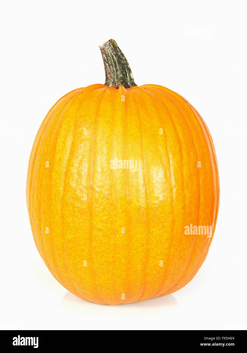 Studio shoot of a pumpkin isolated on white - Stock Image