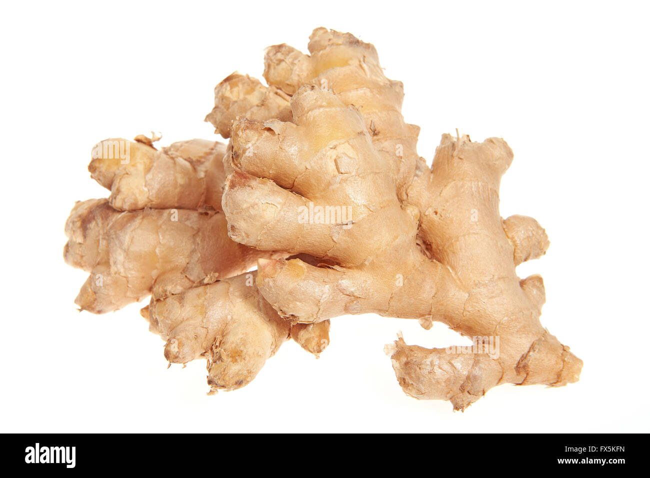 Ginger Rhizome or root isolated on a white background - Stock Image