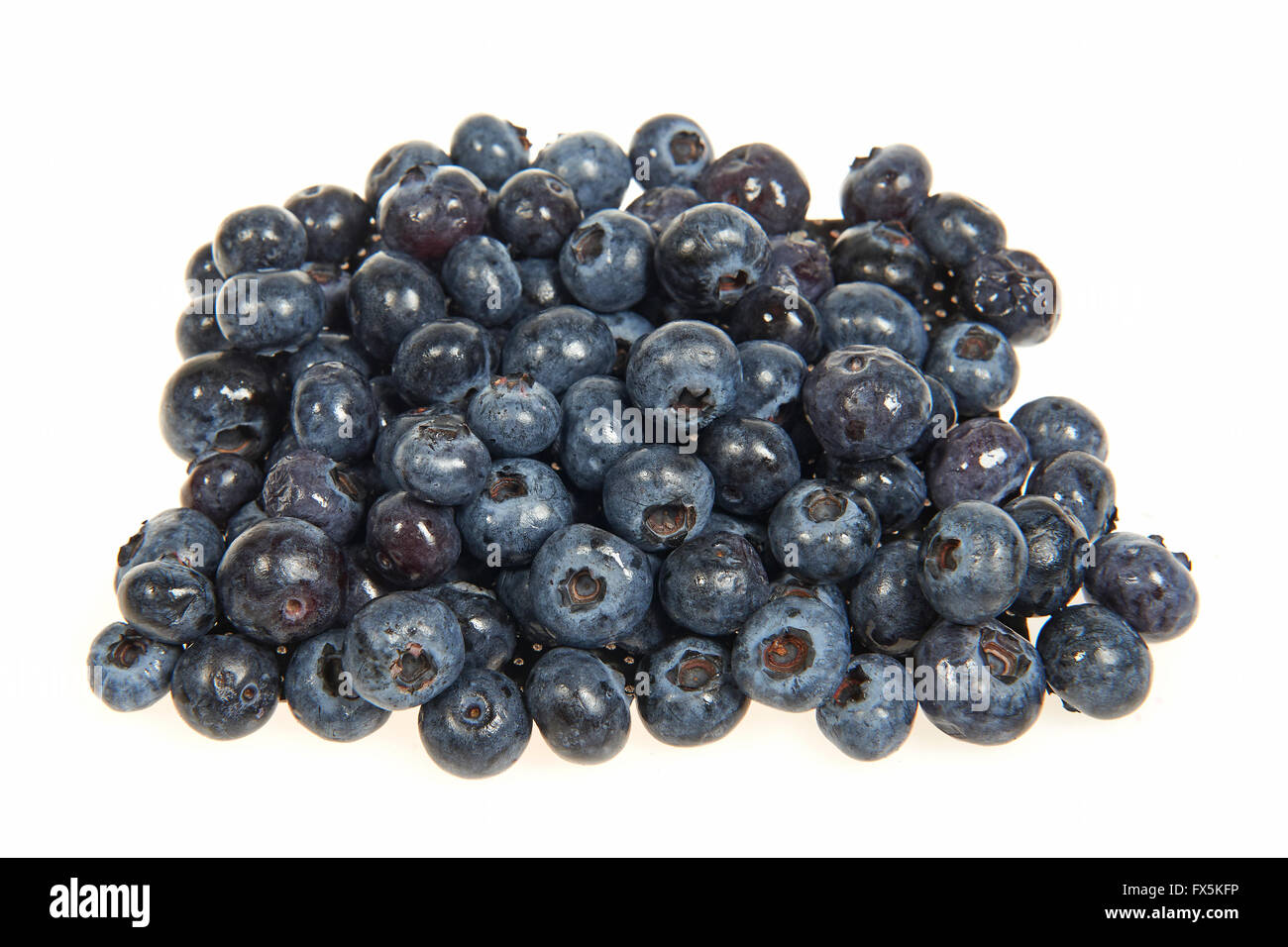 Fresh Bilberrys isolated on a white background - Stock Image