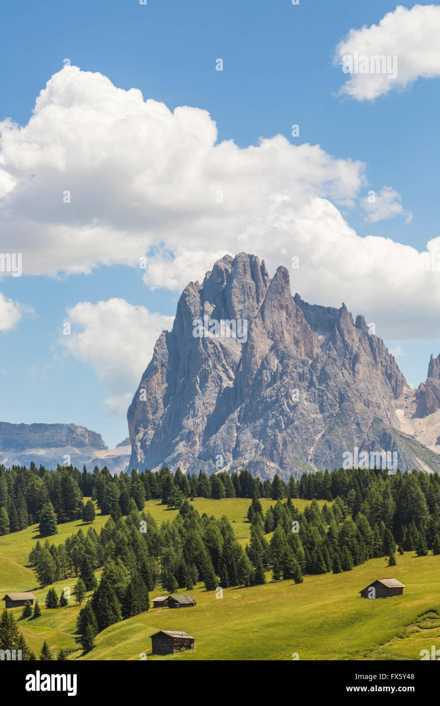 Barns with a high mountain in background and trees and forest, Selva, val Gardena, Dolomites, Italy - Stock Image