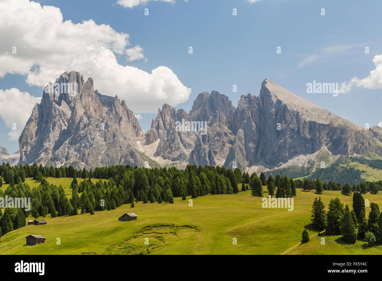 Barns with high mountains in background and trees and forest, Selva, val Gardena, Dolomites, Italy - Stock Image