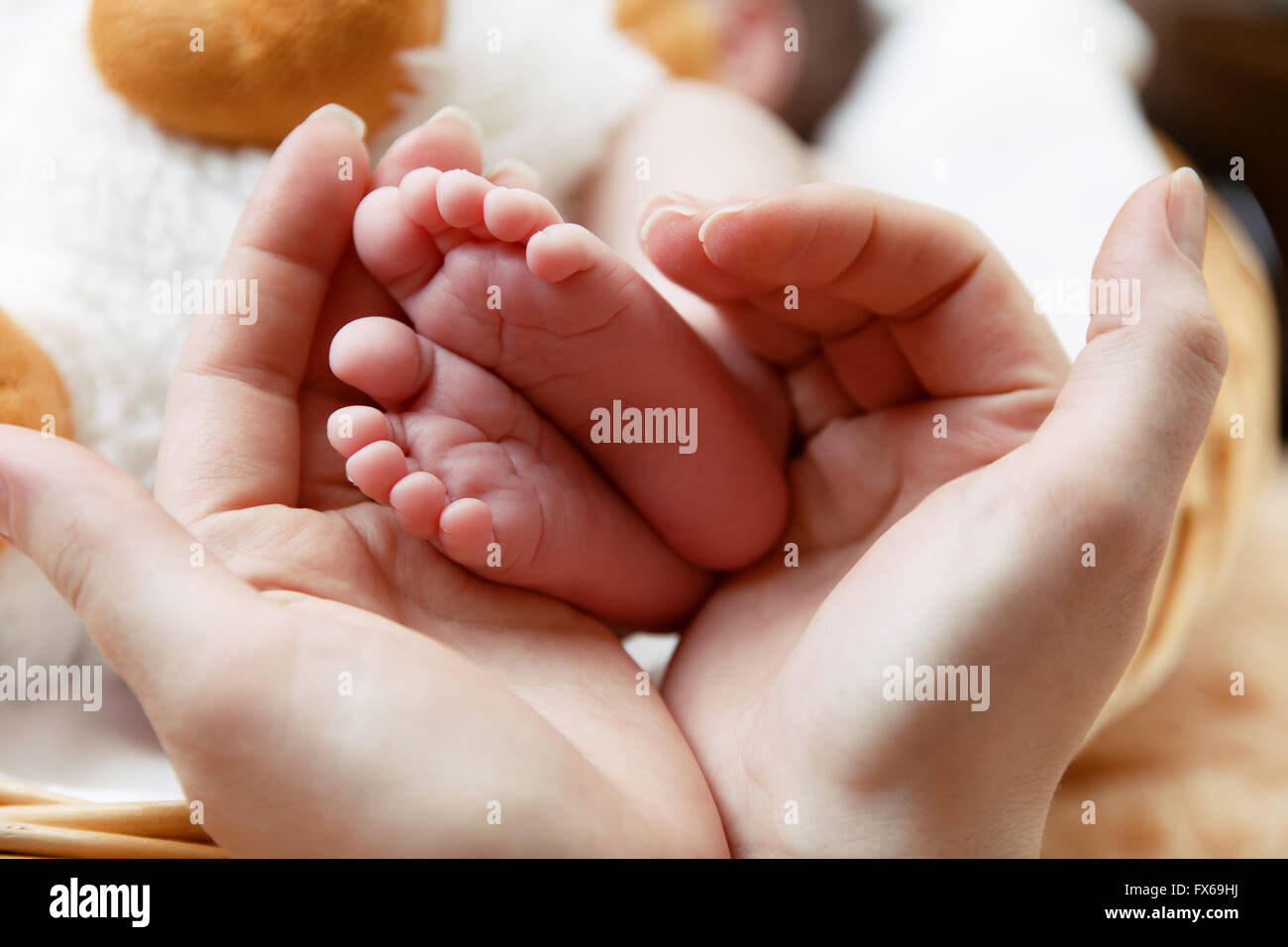 Little baby's feet in mother's hands - Stock Image