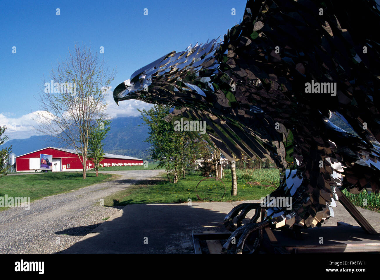 Chilliwack, BC, British Columbia, Canada - Stainless Steel Eagle Sculpture (Kevin Stone, Metal Sculptor) in Fraser - Stock Image