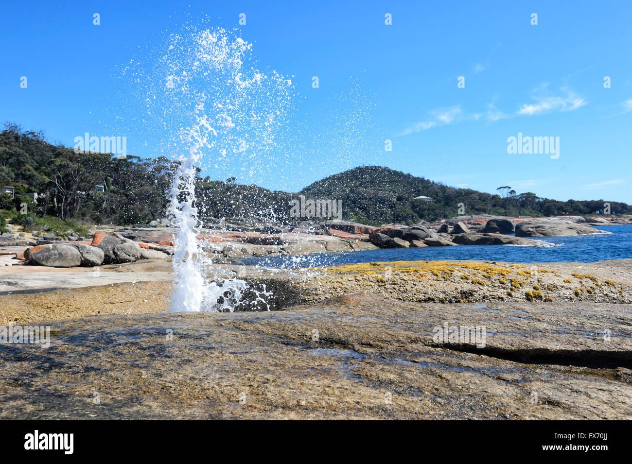 Bicheno Blowhole, Tasmania, Australia - Stock Image