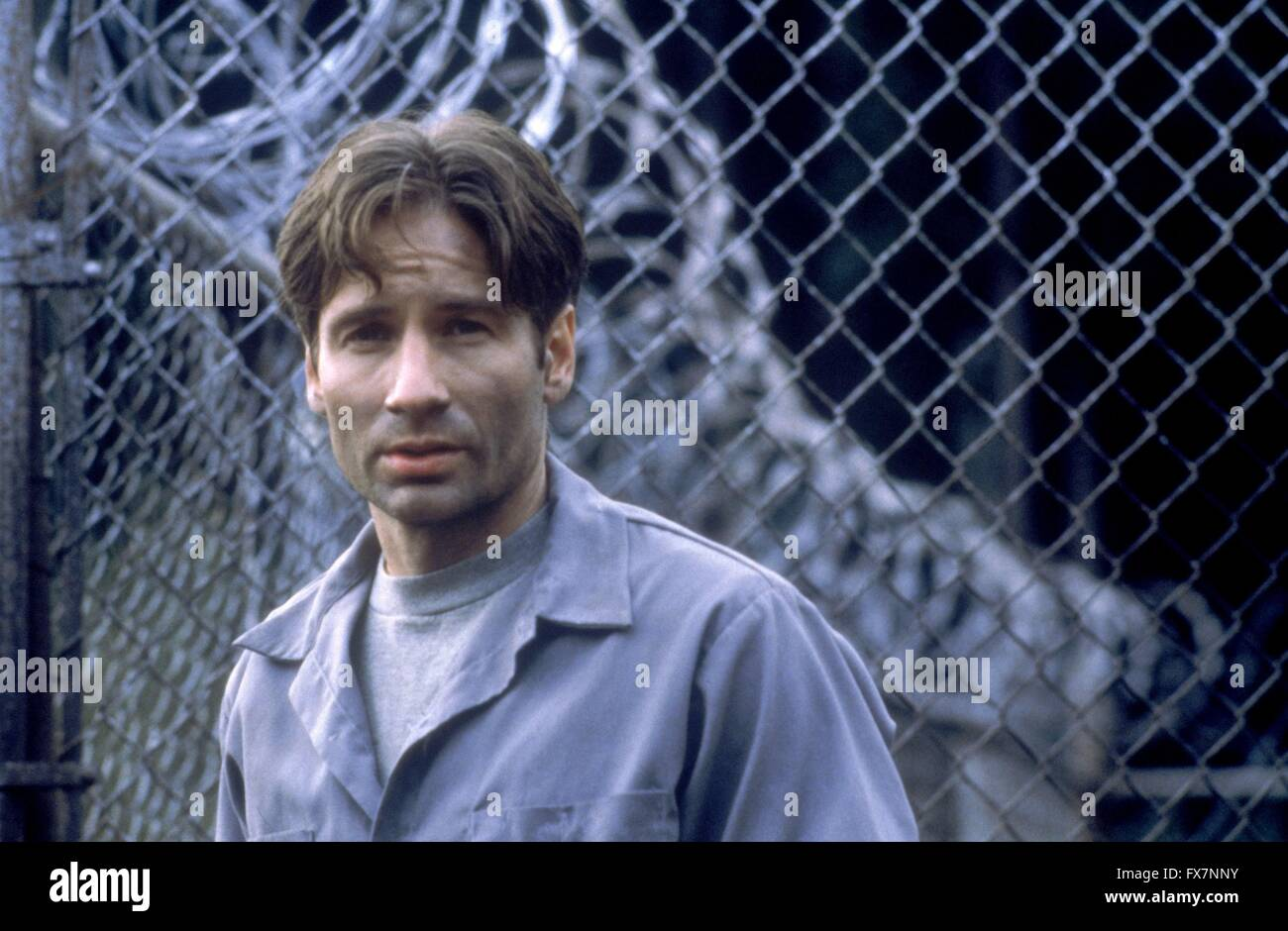 The X Files TV Series 1993 - 2002 USA 1996 Season 4 Created by Chris Carter David Duchovny - Stock Image