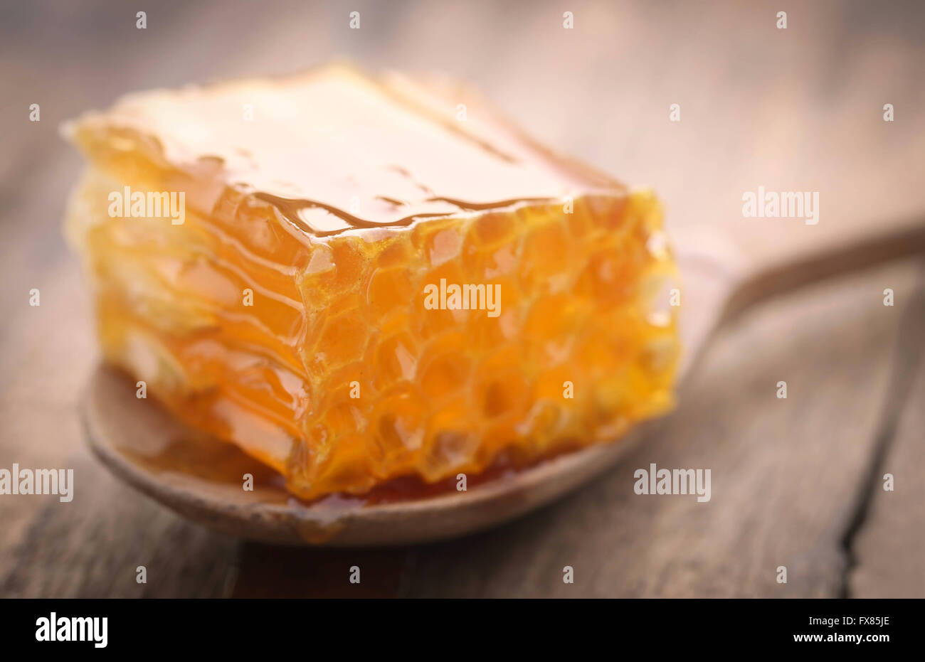 Closeup of honeycomb in a wooden spoon - Stock Image