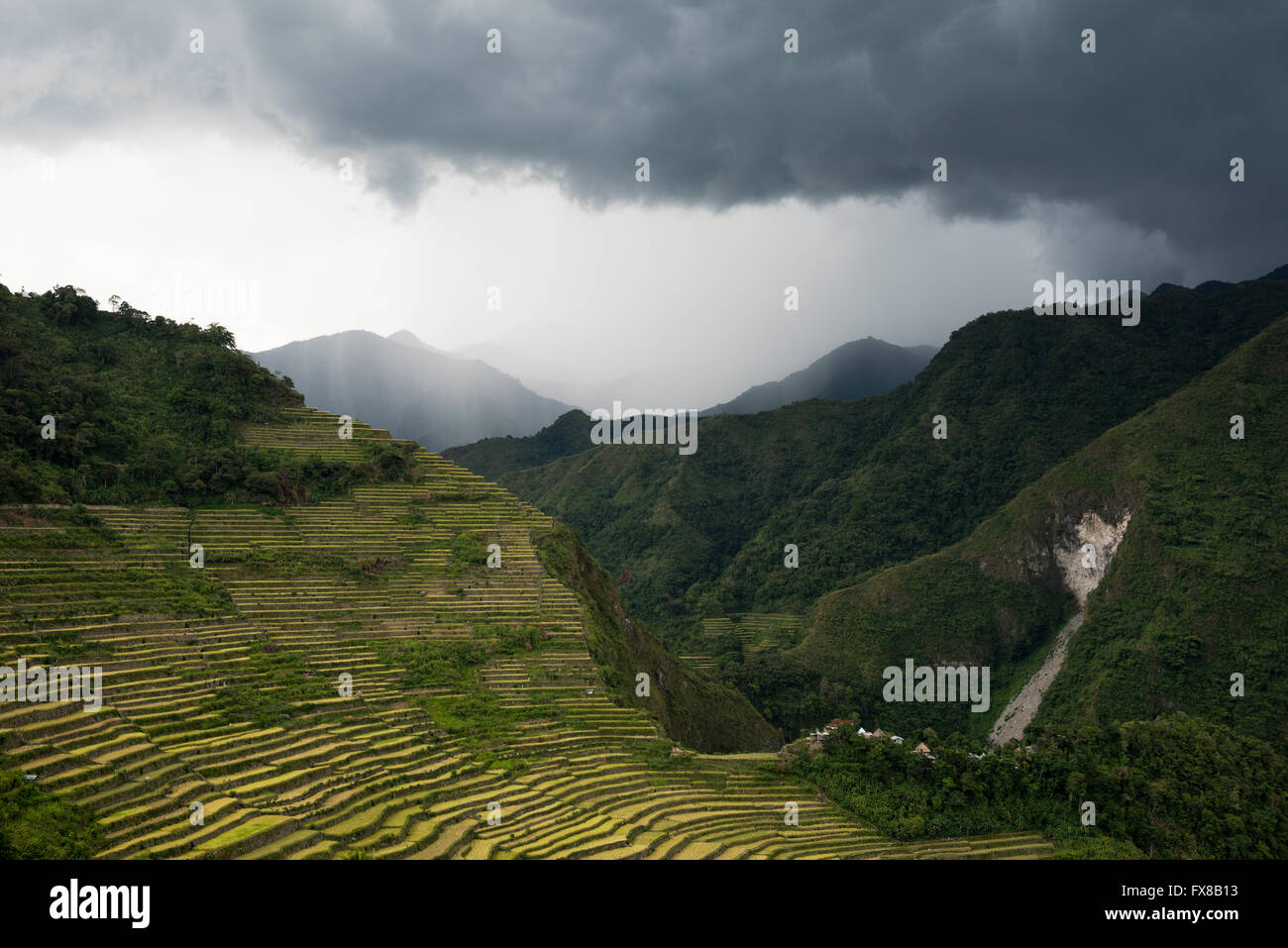 Batad rice terraces during a tropical storm in Banaue, Ifuego , Philippines.  Batad is situated among the Ifugao - Stock Image