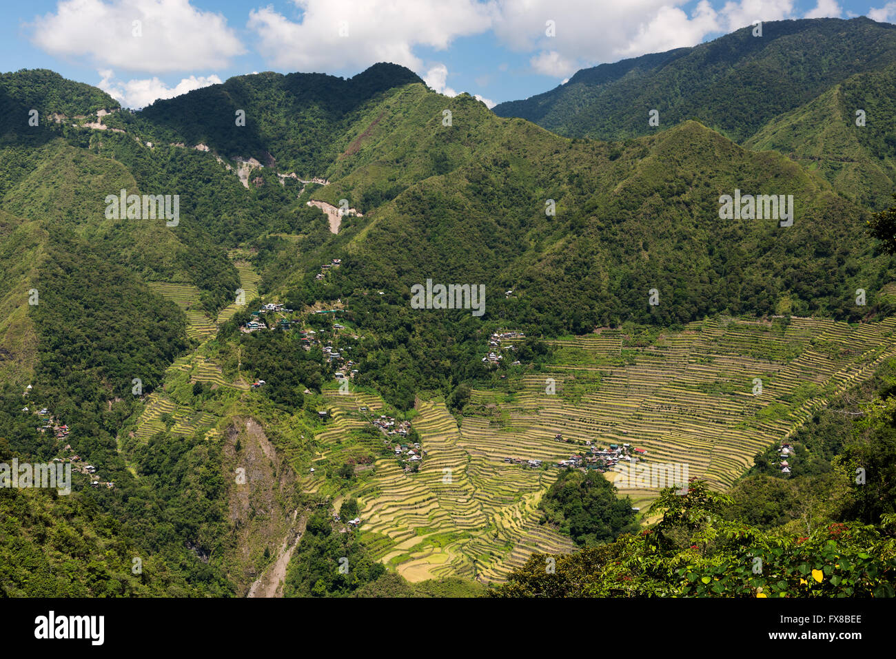 Batad rice terraces  in Banaue, Ifuego , Philippines.  Batad is situated among the Ifugao rice terraces. It is perhaps - Stock Image