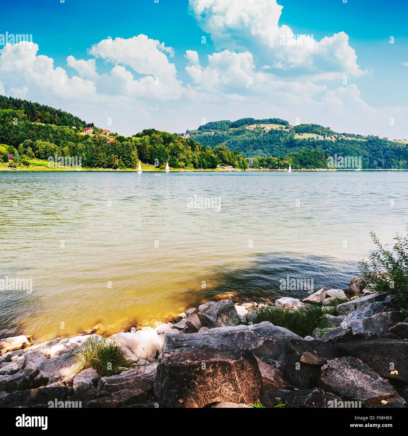 Summer day over the lake - Stock Image