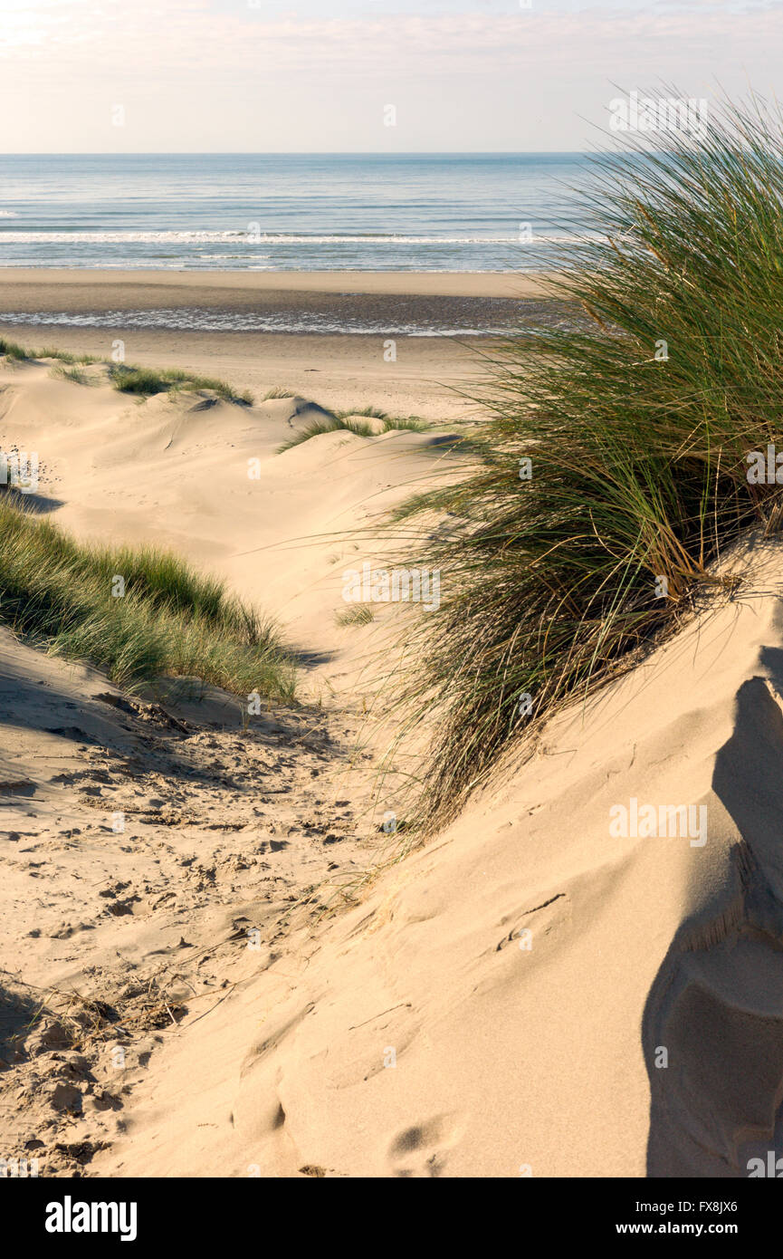 Large sandy beaches alongside Ynyslas Sand dunes bordering Cardigan Bay Ceredigion part of Dyfi National Nature - Stock Image